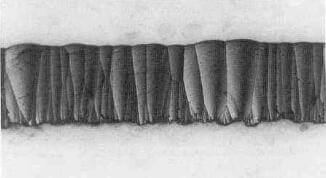 columnar structure of pyrolytic graphite.