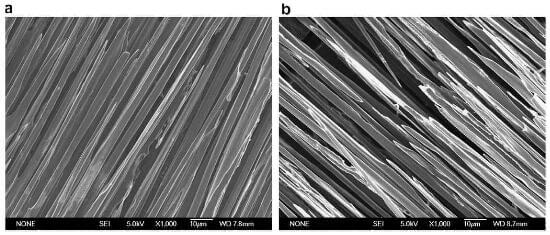 microscopical investigation of oxidation processes for the longitudinal bundle of 2D CC composite
