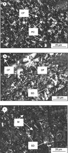 Fig.3-polarized-light-micrographs-of-the-CC-composites